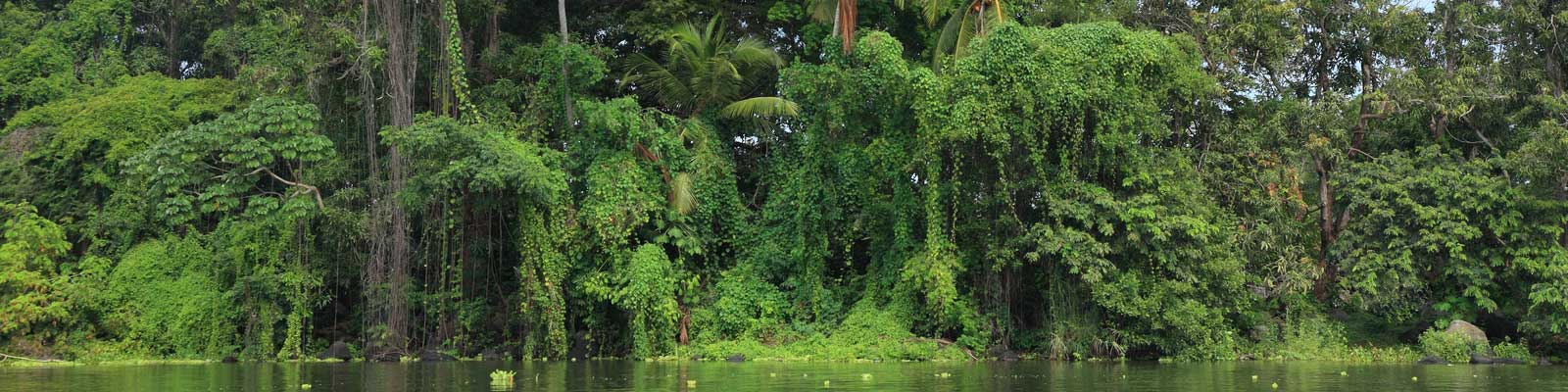 Nicaragua Lagos Florestas Ferias de tempo longo. Casas grandes e pequenas.